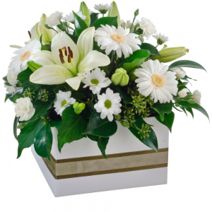 Mixed Box Arrangement