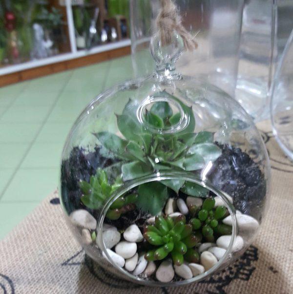 Wandin florist Terrarium small